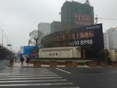 上海大宁金茂府实景图图片