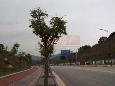 广州科城山庄周边配套图片